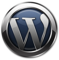 WordPress 2.9.1 Fixes 24 Known Bugs