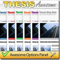 ThesisAwesome.com Makes Thesis easy to use!