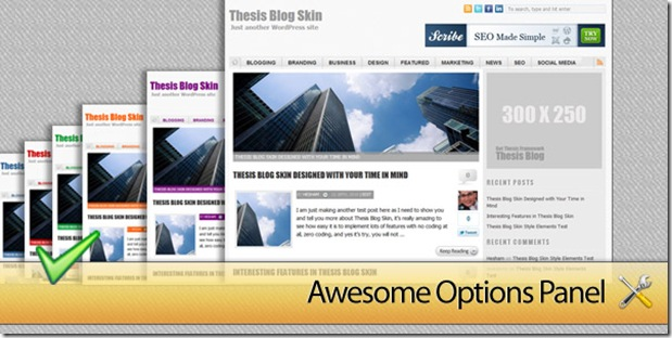 ThesisAwesome.com Blog Skin Options Panel!
