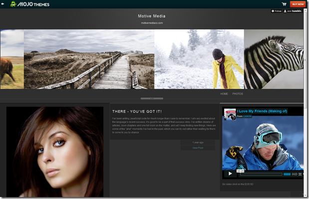 Mojo Premium Tumblr Themes