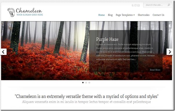 chameleon-by-elegant-themes