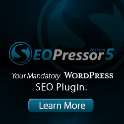 The Mandatory WordPress SEO Plugin