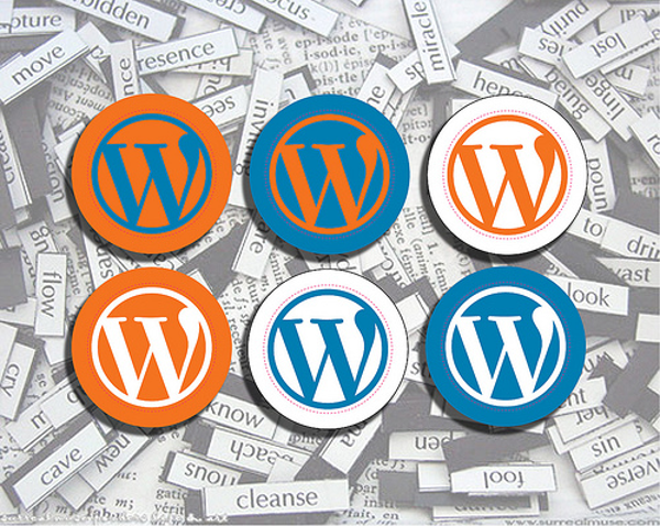 Top Reasons NOT To Use WordPress