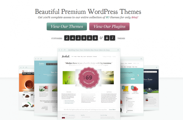 5 Beautiful Themes by ElegantThemes