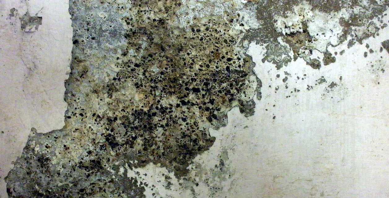 Grunge Texture Granite Chipped Paint wall Rough Dirt Surface Photo